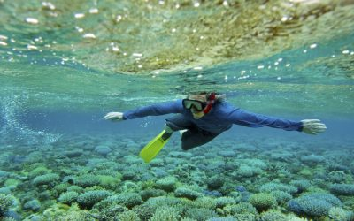 Mapping Ocean Wealth Named a Finalist for Tourism for Tomorrow Awards