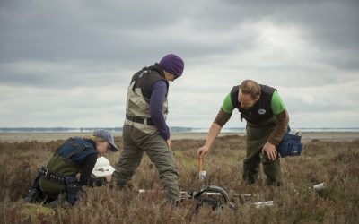 Notes from the Field: MOW Australia Measures Blue Carbon in Australia