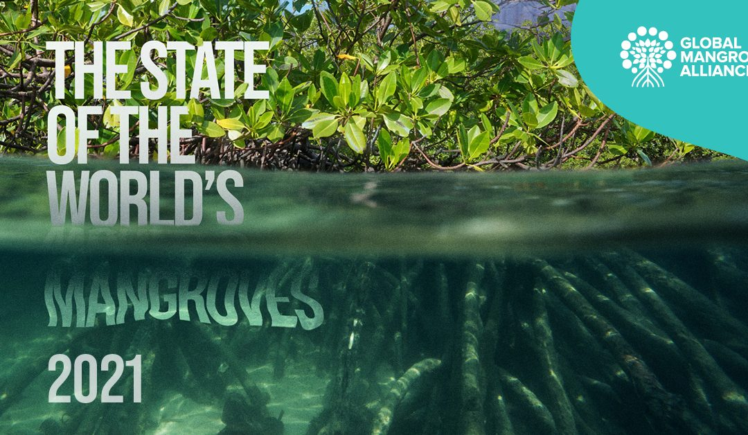 New report shows slowdown in mangrove losses–providing a 'last best chance' for global action to protect coastal forests