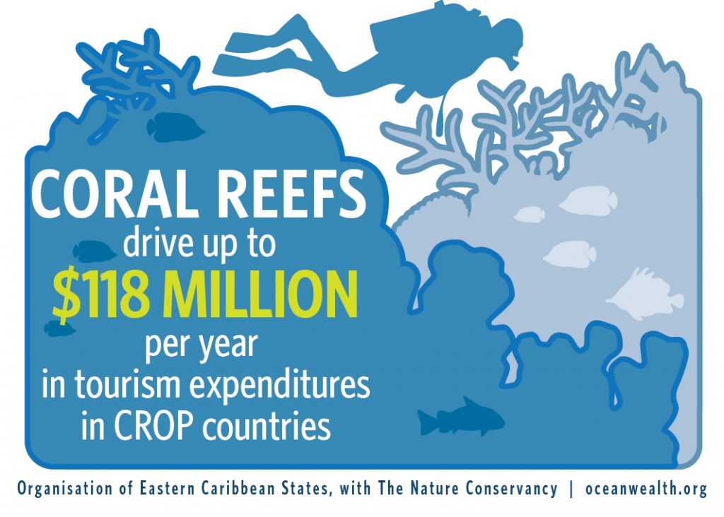 On Reef Tourism
